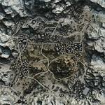 WoTanks - Карты WoT - Священная долина